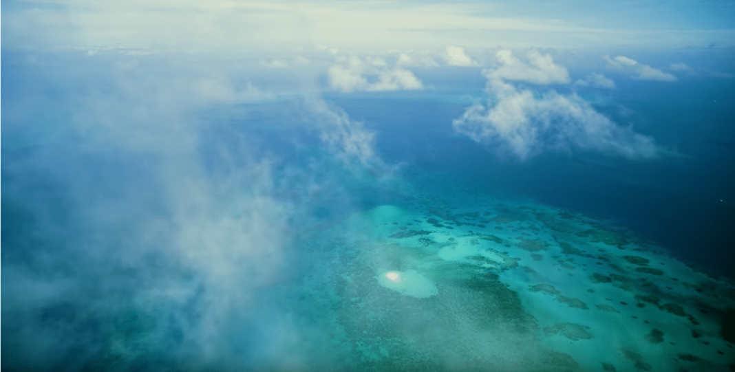 Great Barrier Reef in IMAX