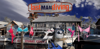 The Last Man Diving Season 2
