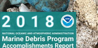 2018 NOAA Marine Debris Program Accomplishments Report