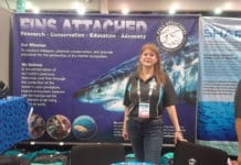 Fins Attached at DEMA Show 2018