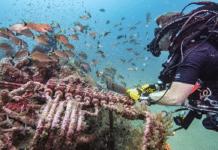 NOAA Archaeologists Study Shipwrecks In 'Graveyard Of The Atlantic' (Photo credit: Tane Casserley/NOAA)