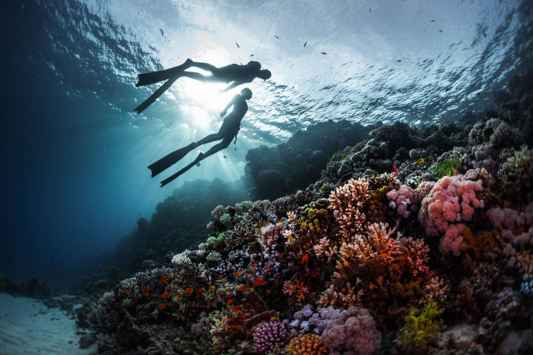 5 Ways Freediving Changes Your Life 1
