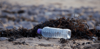 BSAC steps up it campaign against single use plastic