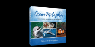 Ocean Metaphor: Unexpected Life Lessons from the Sea