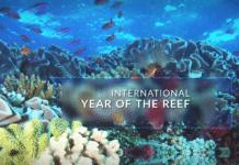 NOAA Celebrates Corals Week