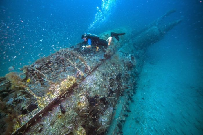 NOAA diver surveys the German U-boat, U-352. Photo: Tane Casserley/NOAA
