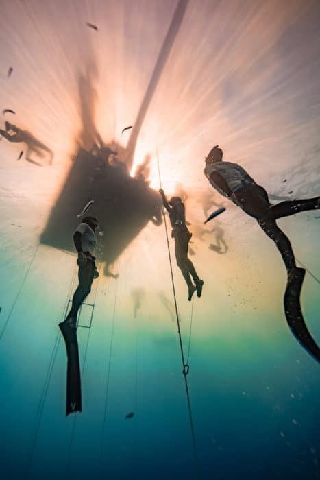 Surfacing into golden sunlight (photo by Daan Verhoeven)