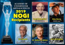 2019 NOGI Award Recipients Announced