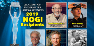 2019 NOGI Award Recipients Announced