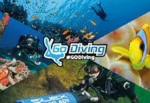 GO Diving Show Guide Now Available
