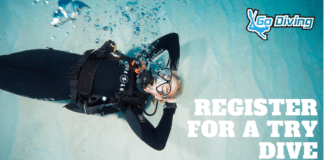 GO Diving Show Will Feature 'Try Dives'