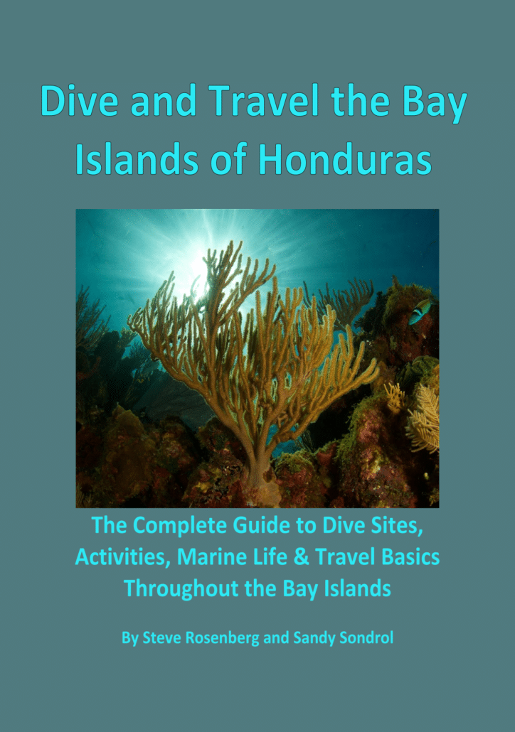 'Dive and Travel the Bay Islands of Honduras' by Steve Rosenberg and Sandy Sondrol