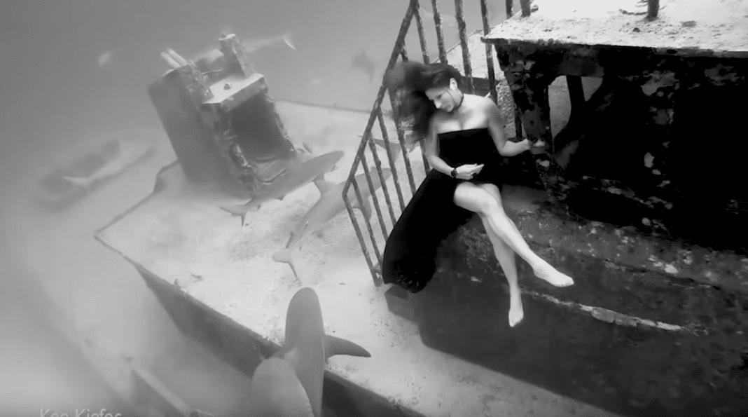 Kimber Kiefer Posing with sharks in the Bahamas
