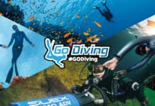 Go Diving Show - Banner