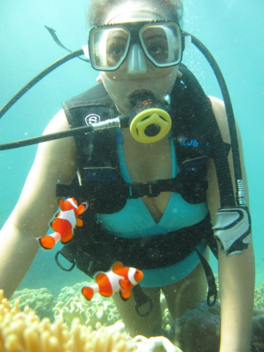 No Live Corals Were Touch For This Photo taken by Carabo Dive Center