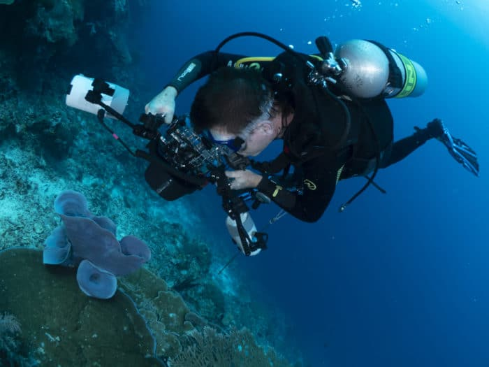 Photography Masterclasses are available at GO Diving