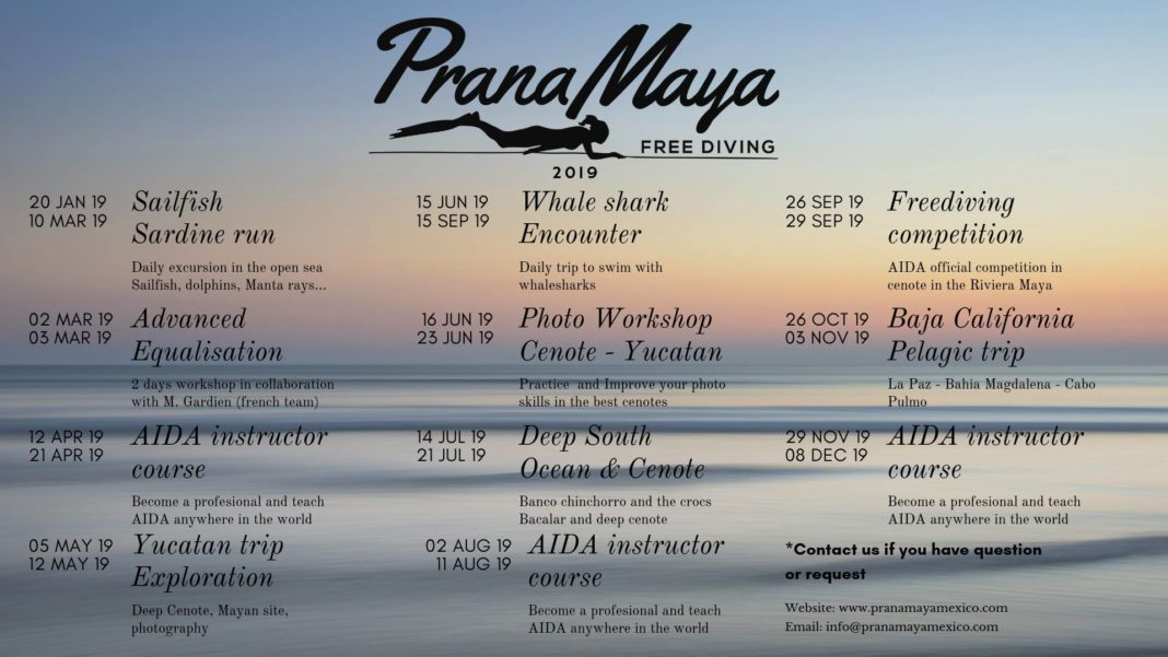 Check Out Prana Maya Freediving's 2019 Events Schedule