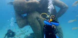 Movie Star Will Smith Dives With Sharks