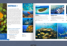 Caradonna Dive Travel Guide