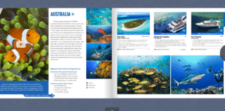 Caradonna Dive Travel Guide