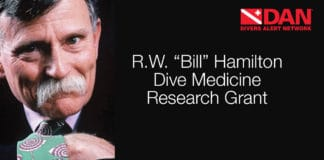 the DAN Hamilton Research Grant