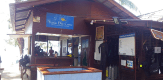 Green Fins Award Goes To Tioman Dive Centre