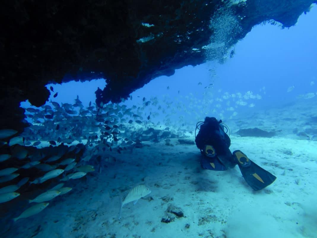 Divers near a wall, fuerteventura , Canary Islands