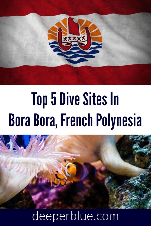 Top 5 Dive Site In Bora Bora, French Polynesia 1