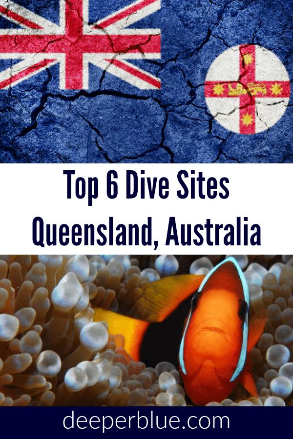 Top 6 Dive Sites In Queensland, Australia