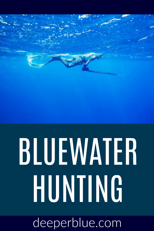 Bluewater Hunting – DeeperBlue com