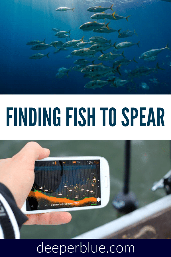 Finding Fish to Spear