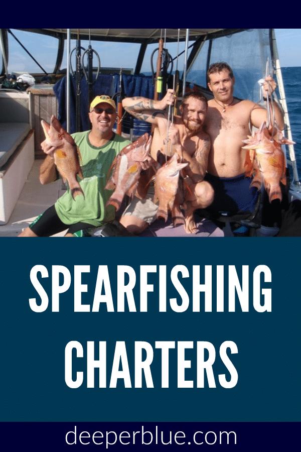 Spearfishing Charters