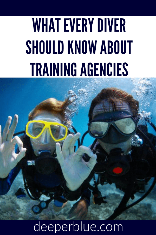 What Every Diver Should Know About Training Agencies