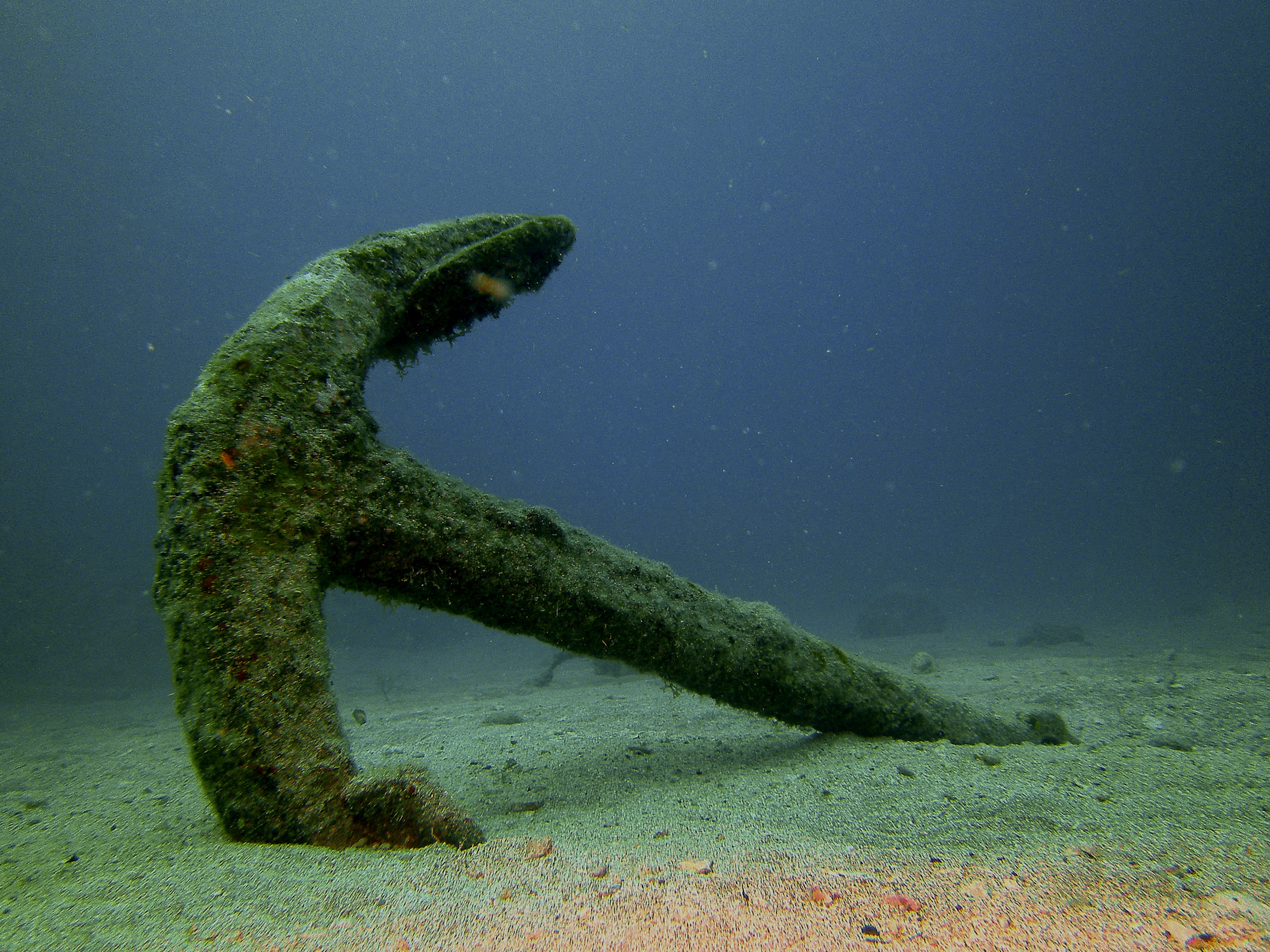 History Of Diving Museum Opens New African-American Underwater Archaeology Exhibit