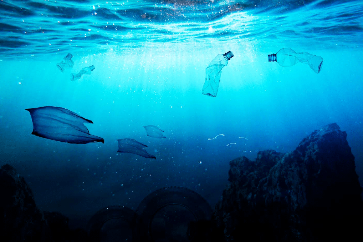 NAUI Announces Launch of Green Diver Initiative Strategic Plan
