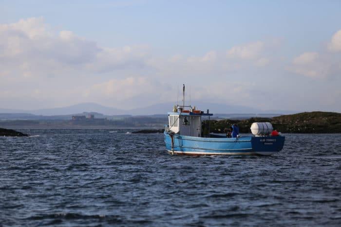 Billy Sheil Boat, Farnes Islands