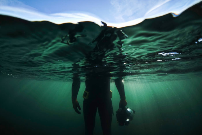 Freediver in the Farnes Islands
