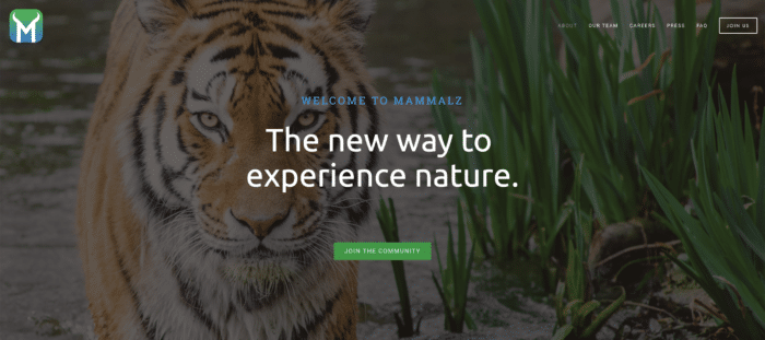 Mammalz - the new way to experience nature