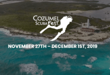 Save Your Spot For The Cozumel Scuba Fest