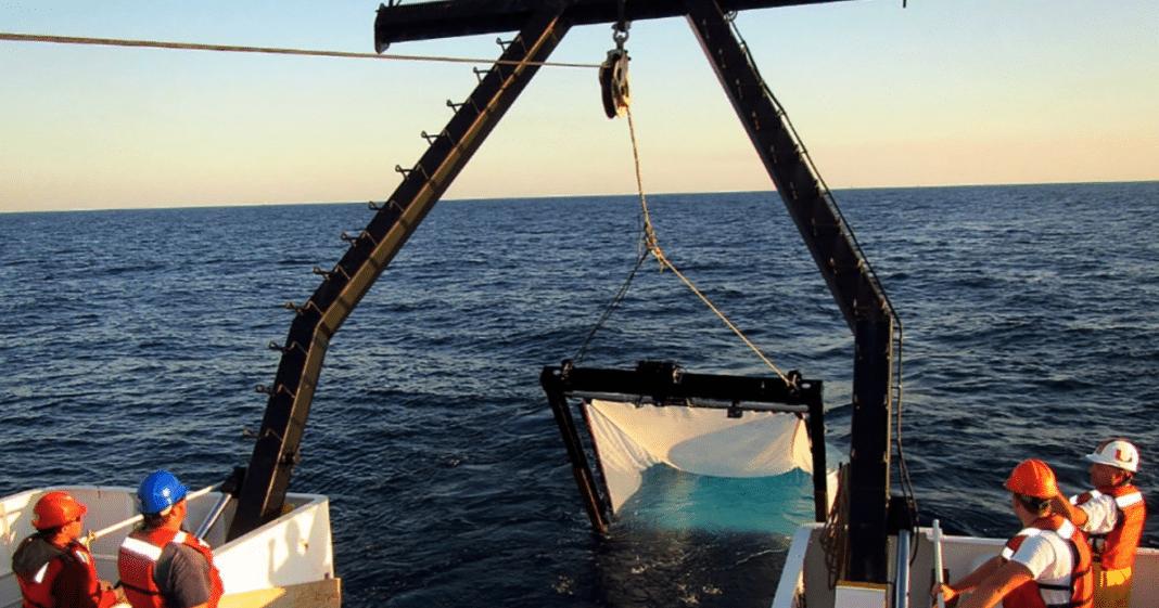 Four Research Teams Win NOAA RESTORE Science Program Grants