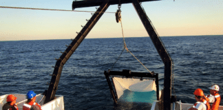 Four Research Teams Win NOAA RESTORE Science Program Grants