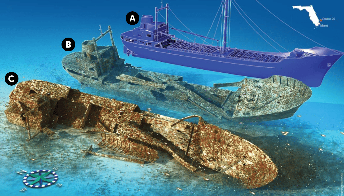 Wreck Panel from Reef Smart Guides