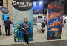 Sealife's Reefmaster RM-4K Camera At DEMA Show 2019