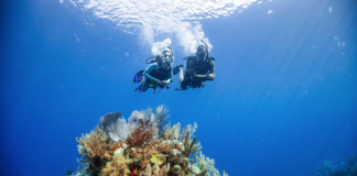 PADI Offering Black Friday, Cyber Monday Deals