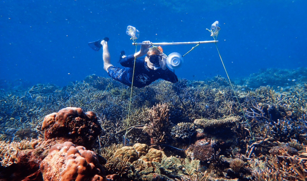 Tim Gordon deploys an underwater loudspeaker on a coral reef. Credit Harry Harding, University of Bristol.
