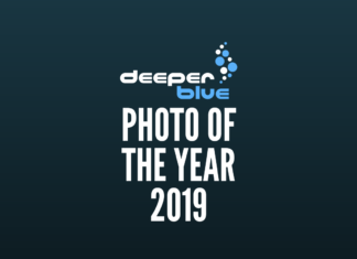 DeeperBlue.com - Photo Of The Year 2019