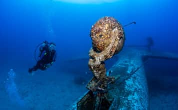 Scuba Diver explores the growth-encrusted landing gear of an underwater aircraft wreck