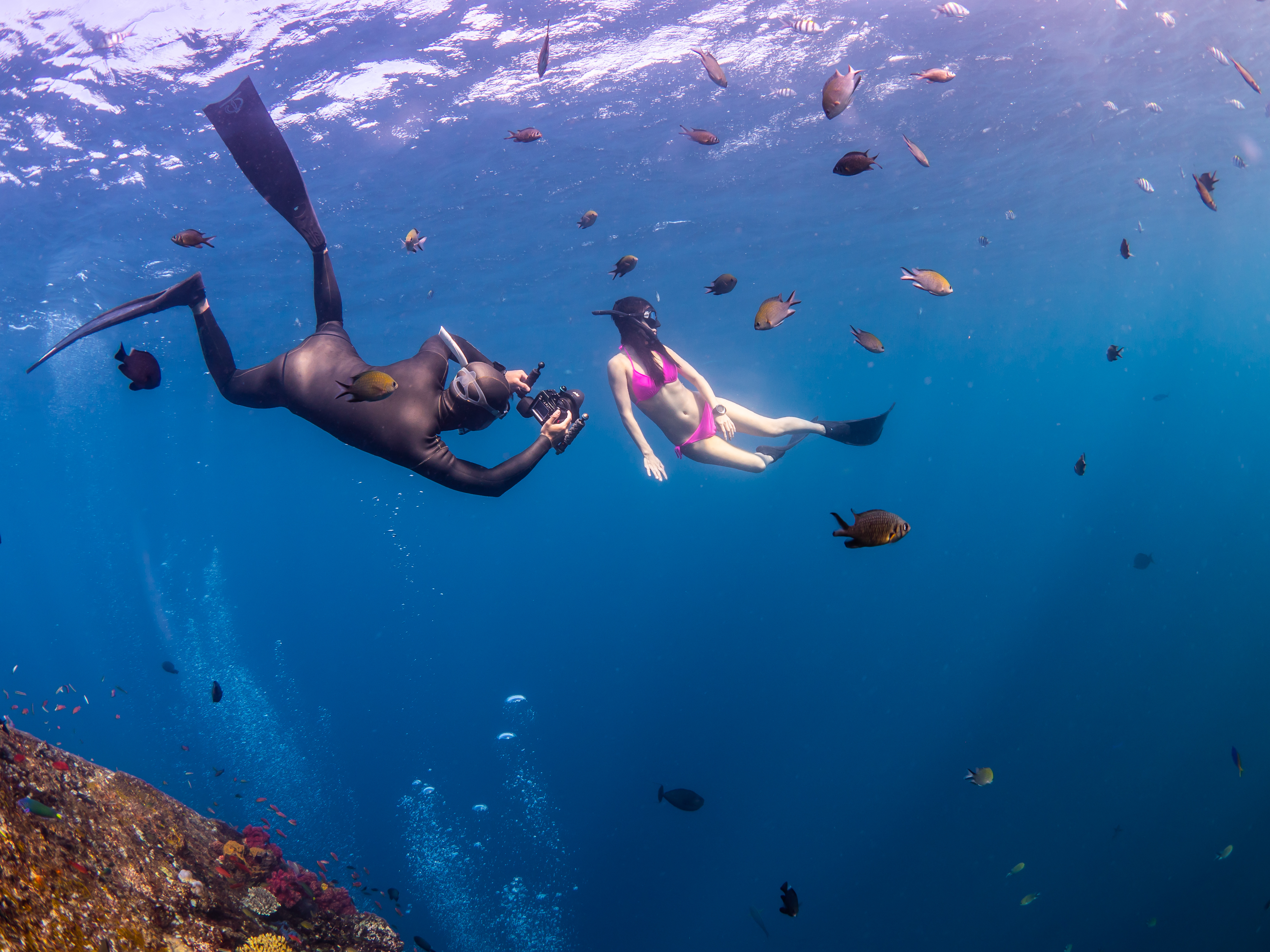 Freediving Photography. - Tips and Tricks for using natural light. Photo by Sam Henry