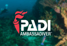 PADI AmbassaDiver 2020 logo
