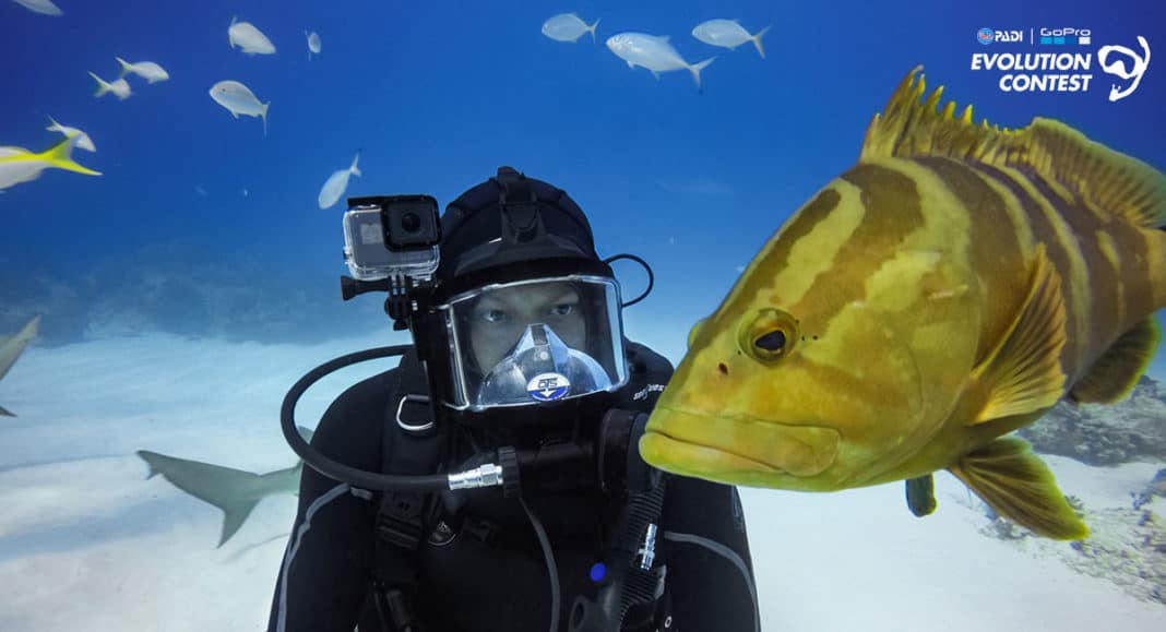 PADI, GoPro Announce Winners of Evolution Video Contest
